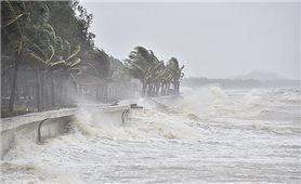 Thủ tướng Chính phủ yêu cầu tập trung ứng phó với bão số 5