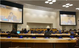 Việt Nam đại diện các nước ASEAN phát biểu về ứng phó Covid-19