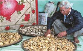 Người uy tín ở Đồng Xuân (Phú Yên): Làm nhiều việc tốt giúp buôn làng phát triển