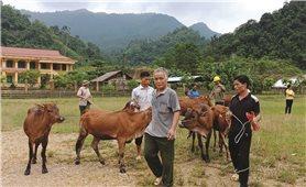 Tuyên Quang: Hiệu quả từ công tác giảm nghèo