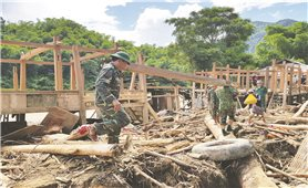 Nguy cơ xảy ra lũ quét, sạt lở đất Thanh Hóa: Phải bảo đảm an toàn cho người và tài sản