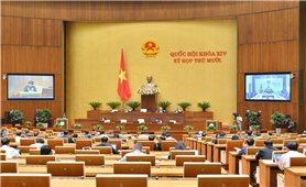 Kỳ họp thứ 10, Quốc hội khóa XIV: Tăng cường sự tiếp cận đối với công tác phòng, chống HIV/AIDS