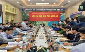 Phó Thủ tướng Trịnh Đình Dũng chủ trì họp ứng phó với bão 12 và 13