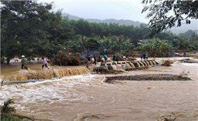 Sạt lở núi, lũ quét ở khu vực miền núi Bình Định: Cần có phương án di dời dân để đảm bảo an toàn