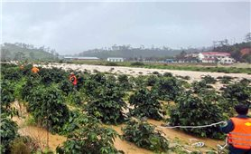 Cảnh báo lũ, lũ quét, sạt lở đất, ngập lụt tại các tỉnh từ Quảng Trị đến Ninh Thuận và Tây Nguyên