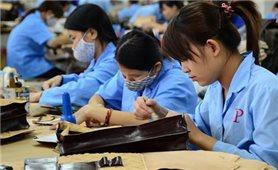 Ban hành quy định về chăm sóc sức khỏe đối với lao động nữ