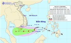 Bắc Bộ rét đậm, rét hại, bão số 14 gây biển động mạnh