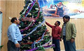 Gia Lai: Đồng bào giáo dân rộn ràng chuẩn bị Lễ Giáng sinh