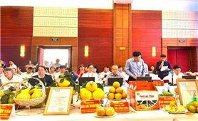 Hòa Bình: Hội chợ Nông nghiệp và triển lãm sản phẩm OCOP vùng Trung du miền núi phía Bắc