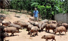 Phát triển vật nuôi đặc sản bản địa đem lại lợi nhuận cao