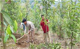 Lai Châu: Người dân sử dụng hiệu quả kinh phí từ dịch vụ môi trường rừng