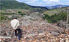 Thu hồi đất nông lâm trường giao cho hộ DTTS tại Khánh Hòa: Chưa phải là giải pháp căn cơ để xóa nghèo