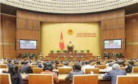 Quốc hội nghe báo cáo nhiệm kỳ của ngành Tòa án và kết quả hoạt động của Hội đồng bầu cử Quốc gia
