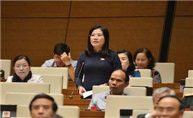 Kỳ họp thứ 11, Quốc hội khoá XIV: Quan tâm giúp đồng bào DTTS có cơ hội phát triển