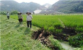 Quỳ Hợp (Nghệ An): Người dân bất an vì đất sụt, nước tụt