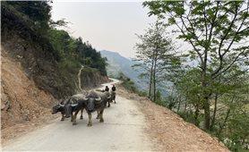 Giảm nghèo ở Hà Giang - Nhìn lại một chặng đường: Hiệu quả từ lồng ghép chính sách (Bài 1)