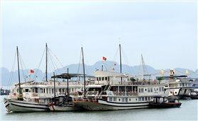 Quảng Ninh: Dịch Covid-19 tác động lớn đến đời sống người lao động