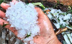 Mưa đá trắng xoá dội xuống huyện miền núi Nam Trà My