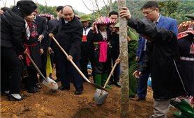 Thủ tướng ra Chỉ thị về trồng 1 tỷ cây xanh và bảo vệ rừng
