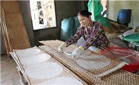 Ngan Dừa nhộn nhịp mùa bánh tráng Tết