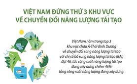 Việt Nam đứng thứ 3 khu vực về chuyển đổi năng lượng tái tạo