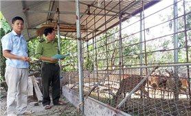 Cảnh báo tác động tiêu cực từ gây nuôi thương mại động vật hoang dã