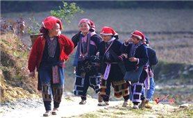 Phát triển kinh tế - xã hội vùng đồng bào dân tộc thiểu số và miền núi giai đoạn 2021 - 2030