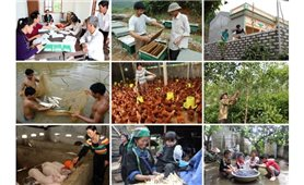 Chỉ thị của Ban Bí thư về tăng cường sự lãnh đạo của Đảng đối với công tác giảm nghèo bền vững đến năm 2030