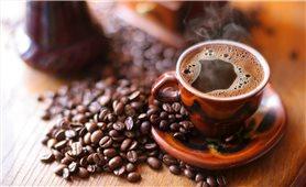 Giá cà phê hôm nay 13/7: thị trường trong nước giảm nhẹ