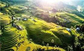 Top những điểm đến chụp ảnh được ưa thích nhất tại Việt Nam