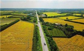 Những điểm mới về đất đai chính thức có hiệu lực từ 1/9/2021 người dân cần chú ý