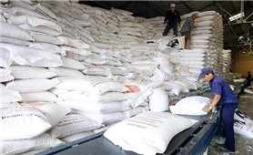 Xuất cấp hơn 75.000 tấn gạo hỗ trợ người dân