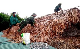 Quảng Bình - Quảng Trị: Chủ động ứng phó với cơn Bão số 5