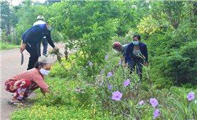 Những con đường hoa ở ấp Tân Thuận