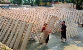 Nghề làm bánh đa nem ở làng cổ Thổ Hà