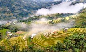 Hà Giang tổ chức Chương trình truyền thông giới thiệu văn hóa các dân tộc gắn với ruộng bậc thang