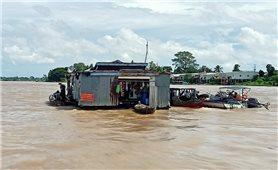 An Giang: Huyện An Phú khẩn cấp di dời 120 hộ dân, để bảo đảm công tác dập dịch
