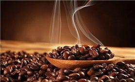 Giá cà phê hôm nay 6/10: Chiều hướng giảm