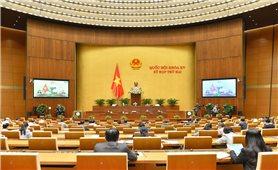 Thông cáo báo chí số 8 Kỳ họp thứ 2, Quốc hội khóa XV