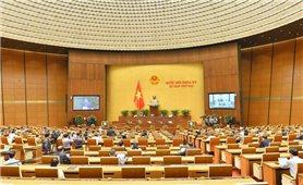 Kỳ họp thứ hai, Quốc hội Khóa XV: Tạo điều kiện để các tỉnh, thành phố phát huy tiềm năng, thế mạnh