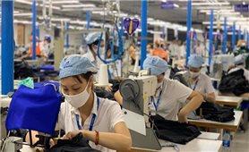 Đã có hơn 7.400 người lao động được nhận tiền hỗ trợ từ Quỹ bảo hiểm thất nghiệp