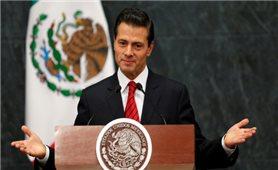 Tổng thống Mexico tin tưởng Việt Nam tổ chức thành công Năm APEC 2017