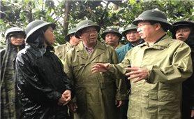 Phó Thủ tướng kiểm tra, đôn đốc công tác ứng phó mưa lũ tại Quảng Ngãi
