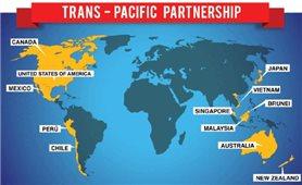 Hy vọng tìm kiếm một thỏa thuận TPP 11 tại APEC 2017