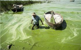 Hình ảnh ô nhiễm hãi hùng ở Trung Quốc