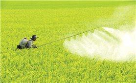 """Phân chia tiêu chí cho vay nông nghiệp công nghệ cao: """"Cú húych"""" khơi thông dòng vốn"""