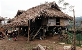 Hậu quả lũ lụt ở Thanh Hóa: Nhiều gia đình vẫn phải sống nhờ, ở tạm