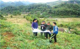 Tín dụng hỗ trợ đồng bào DTTS trồng rừng: Tắc từ nhiều phía