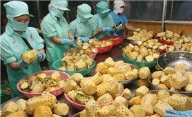Thuế nhập khẩu về 0%: Cơ hội trong thách thức cho nông sản Việt Nam