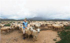 An toàn thực phẩm vùng DTTS và Miền núi: Vấn đề đang bị bỏ ngỏ